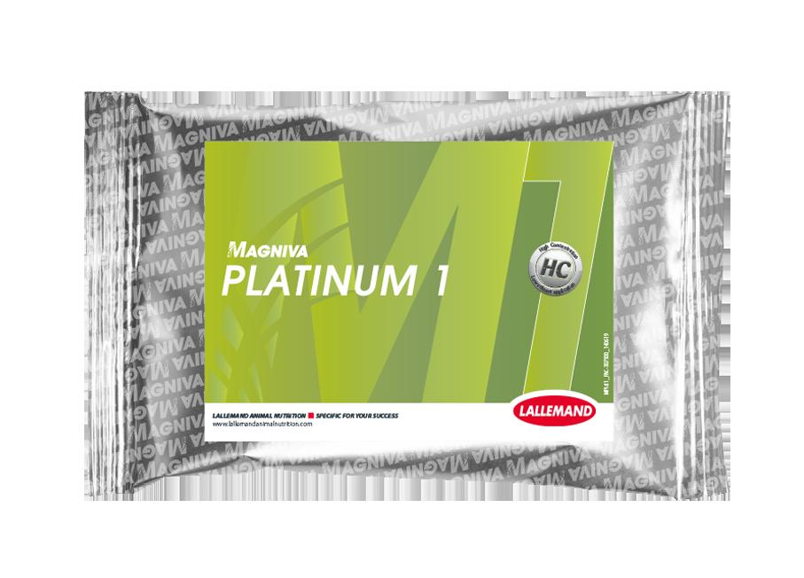 MAGNIVA_Foil_platinum 1